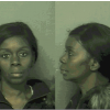 Dothan Police Department Press Release, Burglary